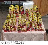 Купить «Лоток с матрёшками», фото № 442525, снято 3 августа 2008 г. (c) Морковкин Терентий / Фотобанк Лори