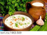 Купить «Суп таратор. Национальная болгарская кухня», фото № 443509, снято 6 сентября 2008 г. (c) Михаил Котов / Фотобанк Лори