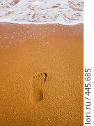 Купить «К морю. Следы на морском берегу», фото № 445685, снято 16 августа 2008 г. (c) WalDeMarus / Фотобанк Лори