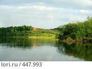Купить «Летний пейзаж», фото № 447993, снято 25 июня 2008 г. (c) Людмила Пашкевич / Фотобанк Лори