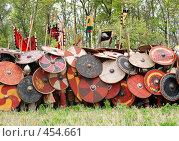 Купить «Панцирь», фото № 454661, снято 11 мая 2008 г. (c) Владислав Грачев / Фотобанк Лори