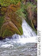 Купить «Мохнатый поток», фото № 455077, снято 16 августа 2008 г. (c) Pukhov K / Фотобанк Лори