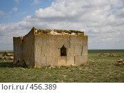Купить «Древняя гробница в степи», фото № 456389, снято 30 апреля 2007 г. (c) Владимир Чмелёв / Фотобанк Лори
