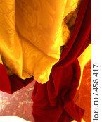 Купить «Гардина», фото № 456417, снято 31 августа 2008 г. (c) Ирина Кочергина / Фотобанк Лори