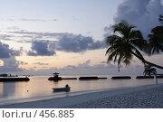 Купить «Восход на Мальдивах. Пальма, лодка в море», фото № 456885, снято 22 ноября 2007 г. (c) Лев Сатаров / Фотобанк Лори