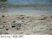 Купить «Пошли купаться», фото № 458081, снято 22 июня 2008 г. (c) А. Клипак / Фотобанк Лори