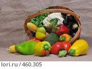 Купить «Корзина с рассыпавшимися овощами», фото № 460305, снято 10 сентября 2008 г. (c) Александр Шутов / Фотобанк Лори