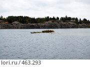 Осенний мотив. Стоковое фото, фотограф николай шишкин / Фотобанк Лори