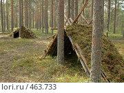 Шалаши в лесу. Стоковое фото, фотограф Юлия Яковлева / Фотобанк Лори