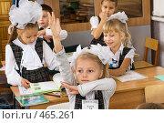 Купить «Первоклассники на уроке», фото № 465261, снято 18 сентября 2008 г. (c) Федор Королевский / Фотобанк Лори
