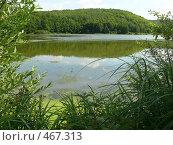 Купить «Вид с берега», фото № 467313, снято 3 августа 2008 г. (c) Максим Рыжов / Фотобанк Лори