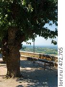 Купить «Смотровая площадка города Грожнян, Хорватия», фото № 472705, снято 19 августа 2008 г. (c) Pukhov K / Фотобанк Лори