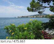 Купить «Цветы на набережной в Монтрё. Швейцария.», фото № 475661, снято 25 июля 2008 г. (c) Светлана Кудрина / Фотобанк Лори