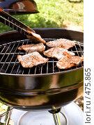 Купить «Мясо жарится на гриле», фото № 475865, снято 2 августа 2008 г. (c) Миняева Ольга / Фотобанк Лори