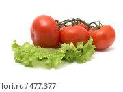 Купить «Свежие овощи на белом фоне», фото № 477377, снято 1 июля 2008 г. (c) Cветлана Гладкова / Фотобанк Лори