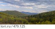 Купить «Уссурийская тайга панорама», фото № 479125, снято 17 декабря 2017 г. (c) Олег Рубик / Фотобанк Лори