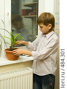 Купить «Мальчик ухаживает за цветами», фото № 484301, снято 29 сентября 2008 г. (c) Ольга Красавина / Фотобанк Лори