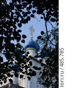 Купить «Купол», фото № 485785, снято 27 июля 2008 г. (c) Алексей Шипов / Фотобанк Лори