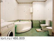 Купить «Интерьер ванной комнаты», фото № 486809, снято 22 ноября 2007 г. (c) Михаил Лукьянов / Фотобанк Лори