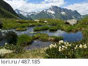 Купить «Цветы родендрона около горного озера», фото № 487185, снято 16 июля 2008 г. (c) Максим Горпенюк / Фотобанк Лори
