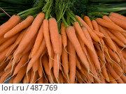 Морковь на рынке. Стоковое фото, фотограф Ярослав Никитин / Фотобанк Лори