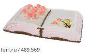 Купить «Подарочный торт в виде книги», фото № 489569, снято 26 сентября 2008 г. (c) Анна Мегеря / Фотобанк Лори