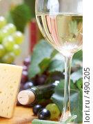Купить «Вино и сыр», фото № 490205, снято 22 сентября 2008 г. (c) Dzianis Miraniuk / Фотобанк Лори