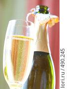Купить «Бутылка шампанского и бокал», фото № 490245, снято 24 сентября 2008 г. (c) Dzianis Miraniuk / Фотобанк Лори