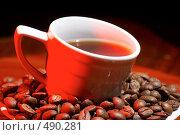 Купить «Горячий кофе», фото № 490281, снято 18 сентября 2008 г. (c) Dzianis Miraniuk / Фотобанк Лори