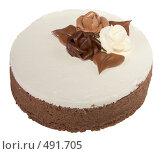 Купить «Подарочный торт шоколадный круглый», фото № 491705, снято 26 сентября 2008 г. (c) Анна Мегеря / Фотобанк Лори