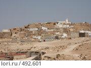 Купить «Арабское селение», фото № 492601, снято 11 августа 2008 г. (c) Nikiandr / Фотобанк Лори