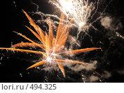 Купить «Фейерверк. Салют. Праздник.», фото № 494325, снято 4 октября 2008 г. (c) Федор Королевский / Фотобанк Лори