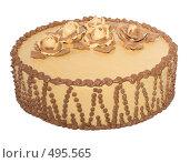 Купить «Подарочный торт со сгущенкой», фото № 495565, снято 3 октября 2008 г. (c) Анна Мегеря / Фотобанк Лори