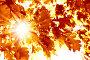 Осень, фото № 495757, снято 25 мая 2008 г. (c) Вероника Галкина / Фотобанк Лори