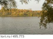 Купить «Золотая осень», фото № 495773, снято 4 октября 2008 г. (c) Максим Кузнецов / Фотобанк Лори