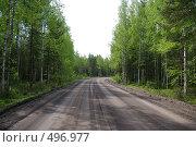 Купить «Лесная дорога», фото № 496977, снято 17 июня 2008 г. (c) Сергей Нестеров / Фотобанк Лори
