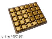 Купить «Шоколадные конфеты в ячейках пластиковой упаковки», фото № 497801, снято 4 октября 2008 г. (c) Федор Королевский / Фотобанк Лори