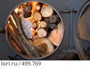 Купить «Железная печь», фото № 499769, снято 4 октября 2008 г. (c) OSHI / Фотобанк Лори