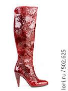 Купить «Женский лаковый сапог. Изолировано», фото № 502625, снято 27 сентября 2007 г. (c) Иван Сазыкин / Фотобанк Лори