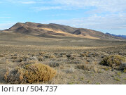 Америка, пустыня Невада (2007 год). Стоковое фото, фотограф Андрей Гривцов / Фотобанк Лори