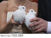 Купить «Свадебные голуби», фото № 505889, снято 11 октября 2008 г. (c) Евгений Батраков / Фотобанк Лори