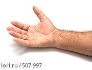 Купить «Мужская рука», фото № 507997, снято 1 октября 2008 г. (c) Виктория Кириллова / Фотобанк Лори