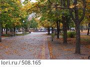 Купить «Золотая осень», фото № 508165, снято 13 октября 2008 г. (c) Анжелина Селинская / Фотобанк Лори