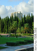 Парк (2008 год). Стоковое фото, фотограф Валерий Александрович / Фотобанк Лори