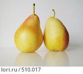 Две груши. Стоковое фото, фотограф Ольга Долотина / Фотобанк Лори