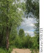 Купить «Окно в небо. Пейзаж», фото № 510721, снято 23 июля 2007 г. (c) Kribli-Krabli / Фотобанк Лори