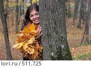 Девушка выглядывает из-за дерева. осень. Стоковое фото, фотограф Сергей Халадад / Фотобанк Лори