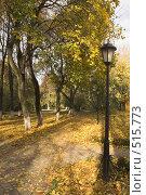 Купить «Осень, листопад», фото № 515773, снято 12 октября 2008 г. (c) Роман Коротаев / Фотобанк Лори