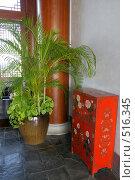 Купить «Гостиная в восточном стиле», фото № 516345, снято 11 октября 2008 г. (c) Окунев Александр Владимирович / Фотобанк Лори