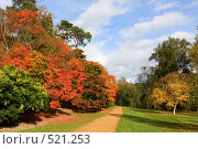 Купить «Осенний парк», фото № 521253, снято 16 октября 2008 г. (c) Максим Горпенюк / Фотобанк Лори